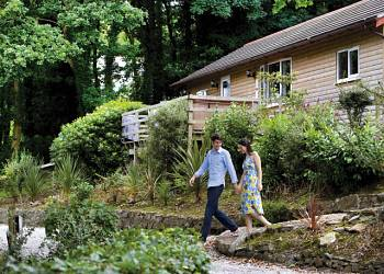 Ivyleaf Combe Lodges