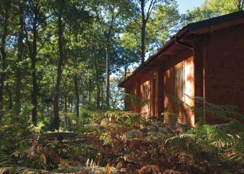 Woodland Park Lodges