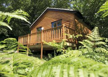 Woodland Lodges, St Clears,Carmarthenshire,Wales