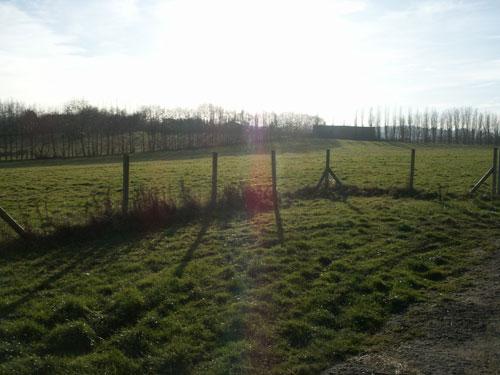 Buckhurst Farm Camping
