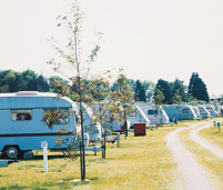 Kings Down Tail Caravan and Camping Park
