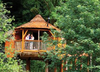 Sherwood Forest Lodges, Sherwood Forest,Nottinghamshire,England