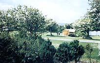Roseville Holiday Park