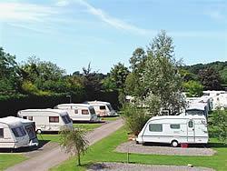 Holmans Wood Holiday Park